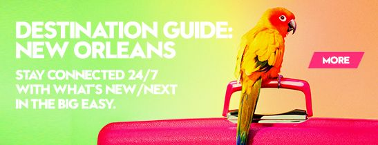 W Hotels Destination guide